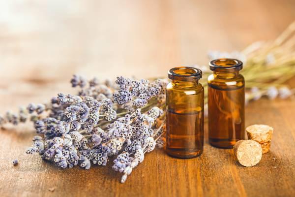 lavender oils