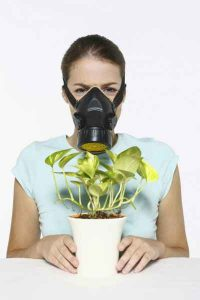 woman holding plant with gas mask on